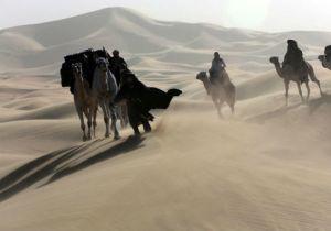 Image of 'Queen of the Desert'