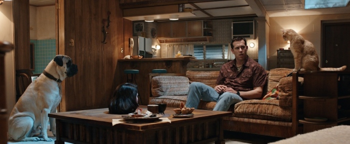 Ryan Reynolds in 'The Voices'