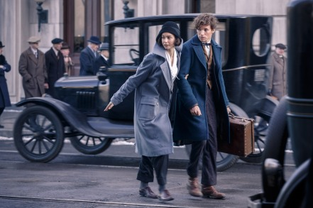 Katherine Waterston & Eddie Redmayne in Fantastic Beasts and Where to Find Them
