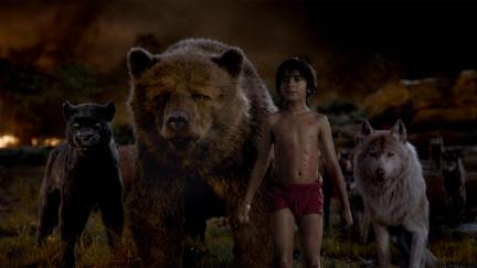Nee Sethi as Mowgli in The Jungle Book