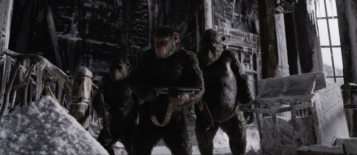 Image of War for the Planet of the Apes