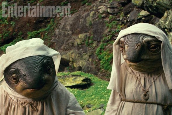 These amphibious creatures are what writer-director Rian Johnson describes as alien nuns -- a religious order, faithful to the Force, who tend to the ancient Jedi structures on Ahch-To.