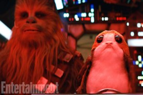 These puffin-like creatures from the island of the first Jedi temple are cute, cuddly, and vexing to Wookiees.