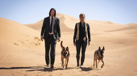 Keanu Reeves & Halle Berry in John Wick: CHapter 3 - Parabellum